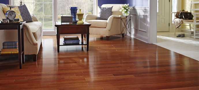 ... Delicate Hardwood Floors. Best_Vacuum_For_Hardwood_Floors