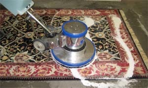Carpet And Rug Cleaning Solution