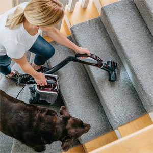 Vacuuming With The Shark Mini Motorized Brush
